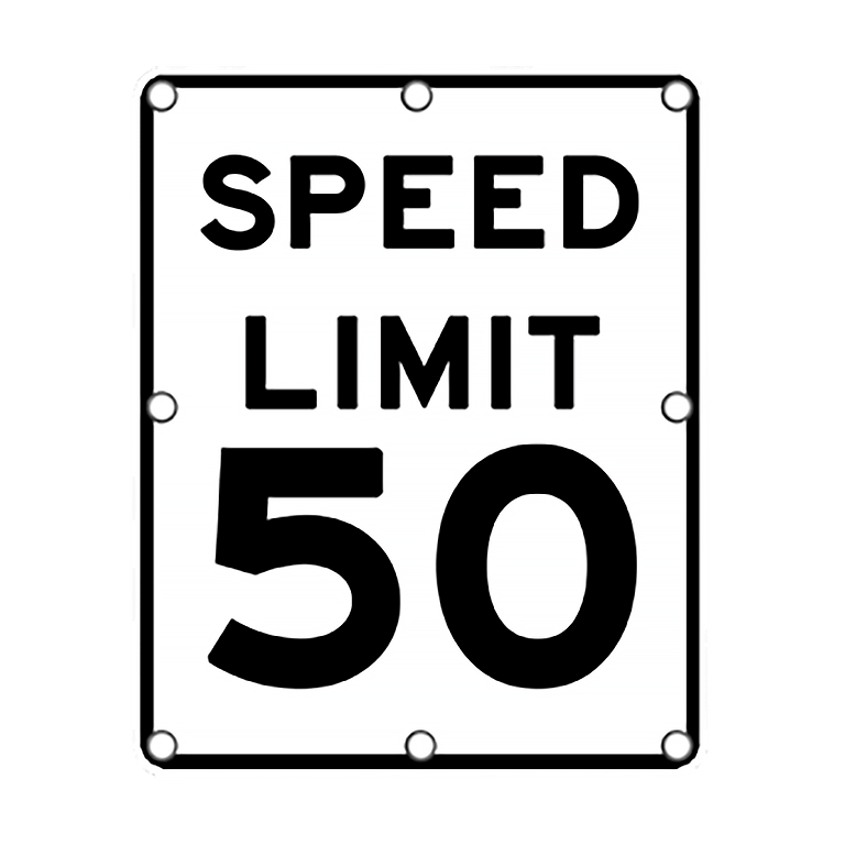 TS40 Flashing Speed Limit Sign day