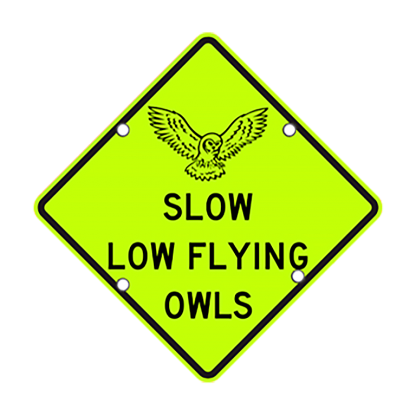TS40 Flashing Diamond Sign Slow Low Flying Owls day